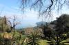 Land 4450 m² in Corfu